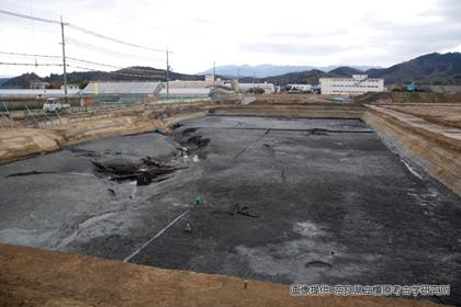 2800年前のノコギリクワガタが発掘された秋津遺跡